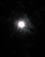 moon_100130.jpg